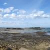 Marée basse sur la côte bretonne