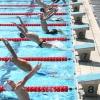 Championnat de France d'aquathlon et résultats...