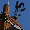 Le coq sur le toit
