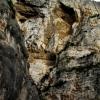 La montagne fait la tête - Arles 2012