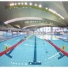Meeting internationnal de natation du...