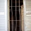 L'enfer de Tuol Sleng