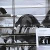 Ne pas perdre l'enfance - Arles 2012