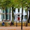 Forêt urbaine - La Haye 2014